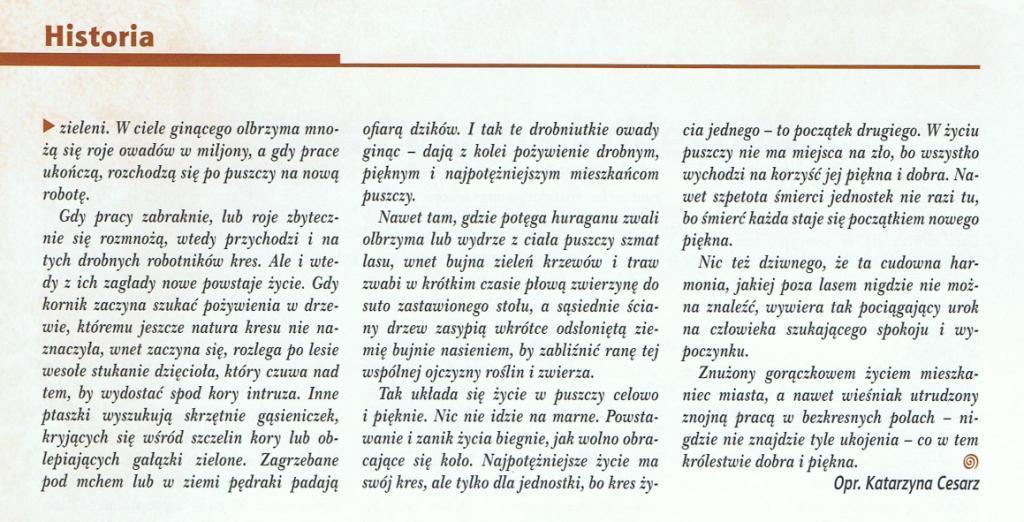 Las Polski, str. 3